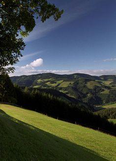 Oh du schönes Almenland! Genießen Sie in der Gasen den wunderschönen Ausblick auf den Naturpark Almenland. #almenland #naturparkalmenland #ausblick  (c) B. Bergmann Golf Courses, Road Trip Destinations, Nice Asses