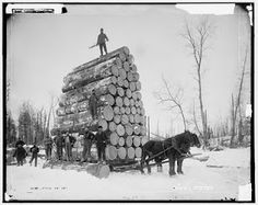 Winter load of white pine logs near Seney, Michigan circa 1890