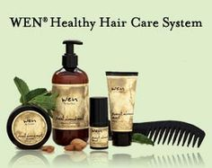 WEN Healthy Hair Care System
