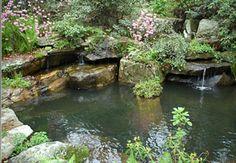 Anthony Archer-Wills Water Garden Design