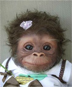 "I keep seeing this as ""Baby monkey"" or ""Cute baby monkey."" -- It definitely is cute, but it's a baby monkey DOLL. This is ""Cookie"" and she's an Amy Ferreira ""Amy's Pipsqueaks"" Reborn doll. She's also sold. (Slide 2 of 19 at the click-through.)"
