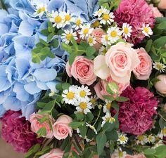 Brighton - Livraison de bouquet de fleurs de saison   Bergamotte