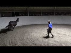 Monty Roberts explains Join-Up® with Equus, the horse - YouTube