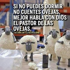 Habla con Dios, el pastor de las ovejas.