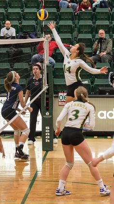 University of Alberta Pandas Volleyball: New Years' Classi… | Flickr Volleyball Practice, Volleyball Workouts, Female Volleyball Players, Women Volleyball, Volleyball Pictures, Cheer Pictures, Cheer Picture Poses, University Of Alberta, Athletic Women