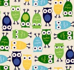 owls everywhere