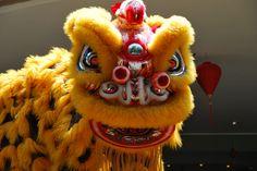Win an International Scholarship from Lion Dance Singapore Lion Dragon, Dragon Head, Chinese Lion Dance, Chinese Dragon, International Scholarships, Dragon Dance, Grey Hat, Foo Dog