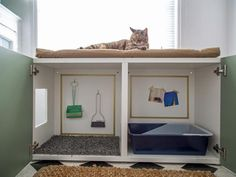 A stylish home that suits both pets and guests? See how design pros make it work.