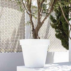 Plastic Bloempot Wit.15 Beste Afbeeldingen Van Grote Bloempotten Garden Plants