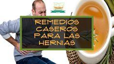 Remedios Caseros Para Las Hernias Aloe Vera Col Arcilla  Xiang Fu caléndula Laurel. el día de hoy te traigo 5 Remedios Caseros para hernias.    1. Aloe vera Es un buen remedio para la hernia. La Aloe Vera ayuda en los casos de acidez y inflamación de estómago úlceras y gastritis. Beber un vaso de zumo de aloe antes de cada comida.  2. Col y arcilla Para el caso de una hernia de disco un remedio consiste en aplicar un cataplasmas de col y arcilla el cual ayuda a calmar los dolores que se…