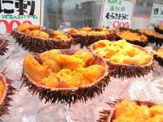 Uni (sea urchin roe) on display at Hakodate Morning Market by jdcb42, via Flickr - I just love this for sushi - it is a taste you must aquire though