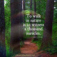 To walk in nature...........