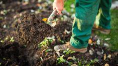 Den Garten besser nicht vor dem Frost umgraben. (Quelle: Thinkstock by Getty-Images)