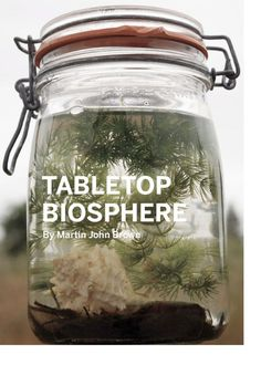Tabletop biosphere.  Great project for indoor gardening with the kids.
