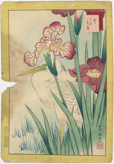 Nakayama Sûgakudô: No. 17, Heron and Iris