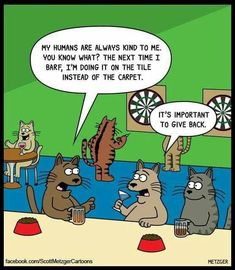 cats at the bar. The Bent Pinky by Scott Metzger. Cat Jokes, Funny Animal Memes, Funny Animal Pictures, Funny Animals, Cat Humour, Silly Jokes, Animal Humor, I Love Cats, Crazy Cats