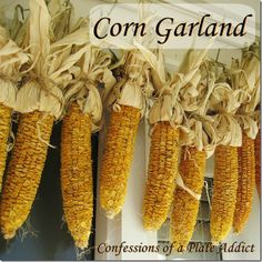 How to Make a Dried Corn Garland.  I love this over the front door.  Will do for fall.