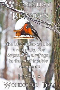 Blessed Wednesday, Good Night Quotes, Lord, Blessings, Sunday, Inspiration, Biblical Inspiration, Domingo