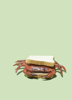 Fresh Crab Sandwich | The Ruby Kit | Styled Product Photography and Creative Content #stilllifephotography #stagedphotography #productphotography #artdirection #halloween