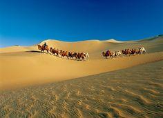 Badain Jaran trekking mit Kamele. Bewegende Sonnenaufgänge, geborgene Stille und endlose Weiten, zusätzlich  vermittelt alte, vom Tourismus fast nie berührte Orte einen Eindruck vom Leben tief in der Wüste.