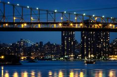 Bridges in Blue - East River  (59th street)  by Dave Beckerman