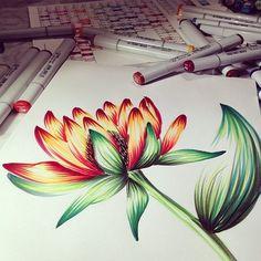Markers flower illustration by @Marina Zlochin Barbato #copic #copicmarkers