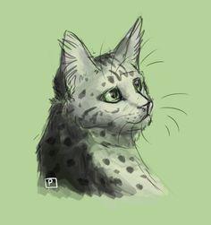 Ferncloud by Cat-Patrisiya.deviantart.com on @DeviantArt