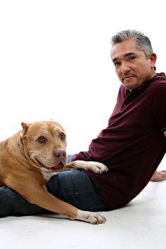 Cesar Millan Pit Bull Daddy, Dies at Age Cesar Millan's beloved pet, Daddy, died peacefully surrounded by family. Daddy lived with the Millans from the age of 4 months. The clam pit bull was a key fixture in more than 50 episodes of Dog Whisperer and o Love My Dog, Puppy Love, Cesar Millan, Rottweiler, Perros Pit Bull, Dog Whisperer, Golden Retriever, Pit Bull Love, Four Legged