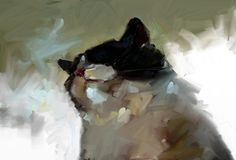 Fuzz Painting | Digital portrait of my cat, Fuzz www.helen-n… | Flickr