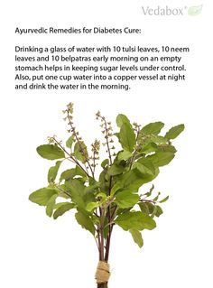 Ayurvedic Remedies for Diabetes Cure:  Drinking a glass of water with 10 tulsi leaves, 10 neem leaves and 10 belpatras early morning on an empty stomach helps in keeping sugar levels under control. Also, put one cup water into a copper vessel at night and drink the water in the morning.