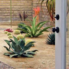 Eclectic Home Desert Landscape Design, Pictures, Remodel, Decor and Ideas