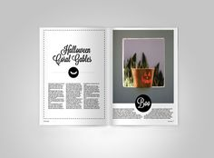 Magazine Spreads by Kirsten Myers, via Behance