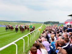 horseracing ireland images - Google Search Images Of Ireland, Dolores Park, Google Search, Travel, Viajes, Trips, Traveling, Tourism, Vacations