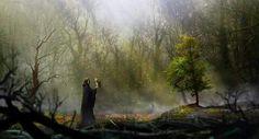 The Dark Kingdom - Secret place by Edouard Noisette https://www.artstation.com/artwork/xJvZR