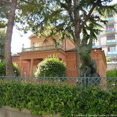Museo Paparella giardini