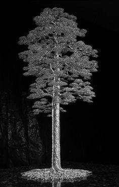 Sequoia alt view 1 by kaitrees on DeviantArt Wire Art Sculpture, Tree Sculpture, Bonsai Wire, Maori Art, Metal Tree Wall Art, Wire Trees, Steel Art, Wood Burning Art, Diy Crafts Hacks