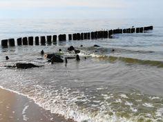 Plaża / Beach | Dziwnów (West Pomeranian Voivodeship), Poland