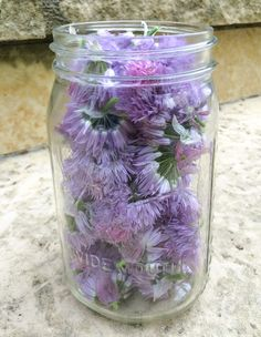 Yet another way to use edible spring blossoms ~ Chive Blossom Vinegar! Incredibly, stupidly easy, and you can customize it yourself with your favorite spices or other edible flowers/herbs. Herbal vinegars are very versatile, whether used in the kitchen or as natural remedies.