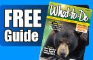 Free Guide with plenty of coupons and discounts for many of the local attractions in Pigeon Forge and Gatlinburg!  #coupons