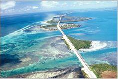 florida keys | Cicloamatori alle Florida Keys per il Bubba Fest // SCENARIO // luxury ...