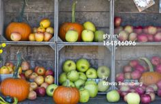 Stock Photo : Crates of fresh vegetables and fruits at a farmer's market