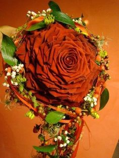 ) Flowers & Roses | via Facebook on We Heart It - http://weheartit.com/entry/106056320