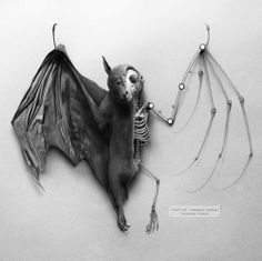 taxidermies d animaux horribles chauve souris mi squelette   Taxidermies danimaux horribles   taxidermie photo image horreur GIF fail empaille empaillage