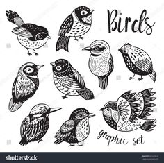 Collection of cute tropical decorative birds Black and white vector illustration Stylized birds design Bird Doodle, Doodle Art, Bird Graphic, Black And White Birds, Zentangle, Black And White Illustration, Bird Illustration, Bird Drawings, Comic Art