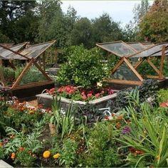 Backyard Vegetable Garden Layout Pictures Photos Images - Backyard vegetable garden ideas