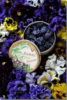 エリザベートの好みだった デーメルのすみれの砂糖漬け 箱がレトロでとても素敵です♪ 大好きなすみれとすずらん☆☆☆ ウィーンには行...