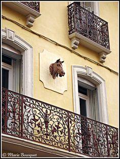 Maison avec balcon en fer forgé et ornement de façade à tête de cheval - Perpignan, France