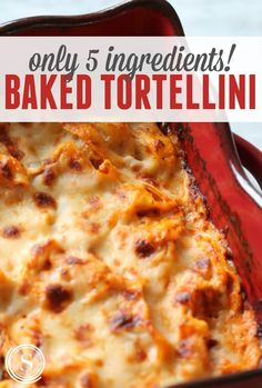 Easy Baked Tortellini Recipe with only 5 Ingredients! Kid Friendly and Perfect for Back to School!