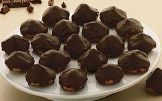 Sarah Bernhardt kager