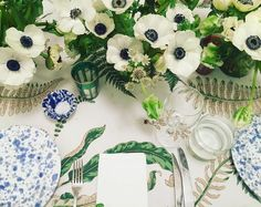 Table with poppies, blue and white, green